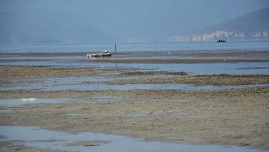 Photo of Драматично намалување на водостојот на Преспанското езеро