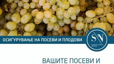 Photo of СН Осигурителен брокер АД Битола порачува- Вашите посеви и плодови насади се повеќе од бизнис, тие се Вашата иднина!