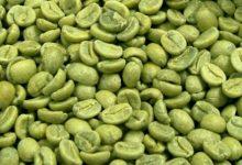 Photo of Зошто и за кого е корисно зеленото кафе