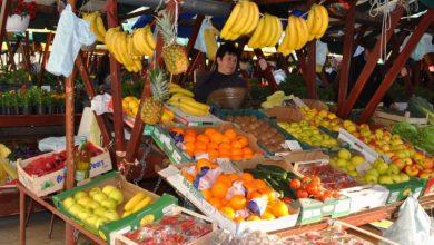 Photo of Зошто зелените пазари полека ја губат битката со големите супермаркети?