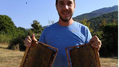 Photo of Пчеларењето не значи само собирање мед