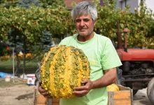 Photo of Илија Ѓоргиевски-И од семки се живее ако знаеш да сработиш и да продадеш