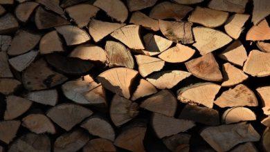 Photo of Греењето на дрва е најзастапено, на струја е еколошки најприфатливо