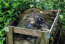 Photo of 12 работи што НИКОГАШ не треба да се компостираат