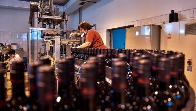 Photo of Намалено производството на вино во светот поради пандемијата