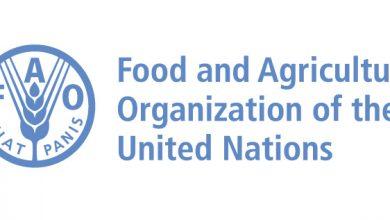 Photo of Чу Донгју: Силни партнерства за трансформација на земјоделско-прехранбените системи во Европа, Централна Азија и пошироко