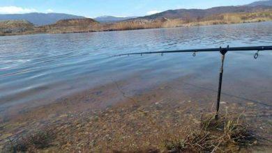 Photo of Крупниот крап сѐ помалоброен во Осломејско Езеро