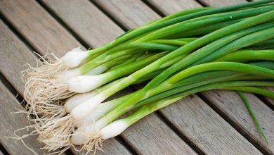 Photo of Зошто кромидот, морковот и зелката цветаат наместо да формираат плод?