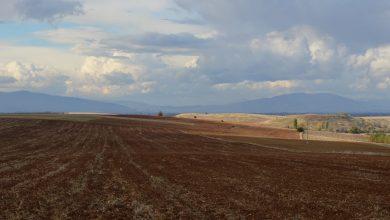 Photo of Сушниот период ќе ги зголеми трошоците на земјоделците