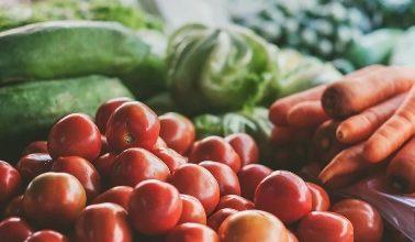 Photo of Почна аплицирањето за субвенции за предадена зелка, градинарски и овошни култури во производни капацитети