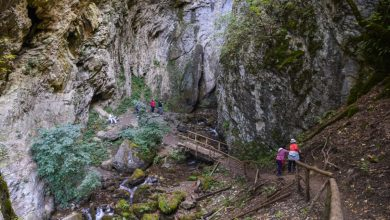 Photo of Дуф водопад – патување до недопрената убавина