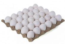 Photo of Од рециклирана хартија до амбалажа за јајца