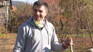 Photo of Во Швајцарија ќе се јадат македонските органски лешници произведени од млади и успешни земјоделци.