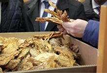 """Photo of СКАНДАЛОЗНО-""""Снајдете се за картони""""-вака им рекле од  Прилепски тутунски комбинат на кооперантите од Далија Табак"""