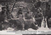 Photo of Кафеавата мечка-симболот на Пелистер