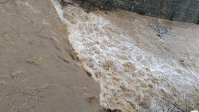 Photo of Во атар на село Породин излеан е канал и поплавена е живинарска фарма