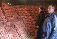 Photo of Македонскиот компир скапува на сметка на увезениот
