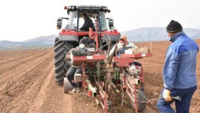 Photo of Земјоделските работници најпогодени според изгубените работни места
