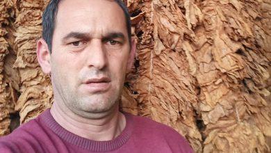 Photo of Еџевит Ајдароски-Долнени е на колена од катастрофалниот откуп на тутунот