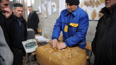Photo of Како да се минимизира пандемискиот шок врз земјоделството