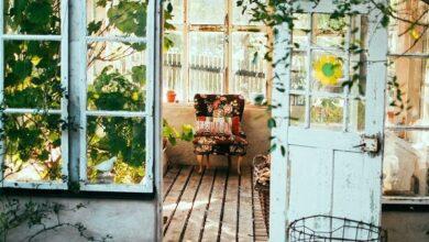 Photo of Пиперки растат на дрвја, а чајот е од продавница?!