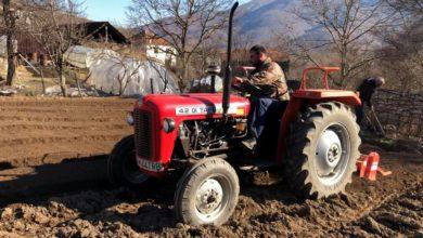 Photo of Земјоделците вредни-Се редат леите за новата реколта на тутунот